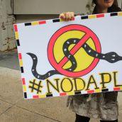 Strong and Stand United : solidarité dans les rues de soi-disant «Montréal» avec Standing Rock