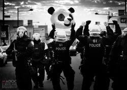 La tête d'anarchopanda a été saisie par le SPVM, lors d'une arrestation de masse le 5 avril contre le règlement P-6. Le panda a récupéré sa tête hier. (Photo : Mario Jean, MADOC Photo, tirée de la page Facebook d'Anarchopanda pour la gratuité scolaire)