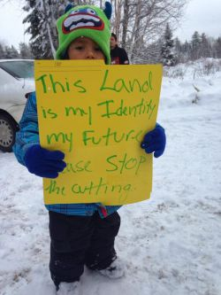 Barriere Lake Algonquin Resistance to Stop Unauthorized Logging and Protect Sacred Sites and Wildlife Habitat