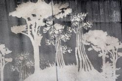 Reverse graffiti trees.