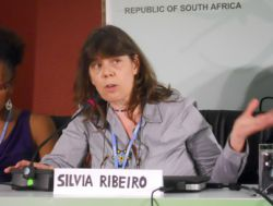 Ribeiro: Inclusion of soil, agriculture in carbon markets would be devastating